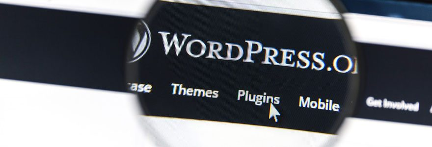 Sites web wordpress